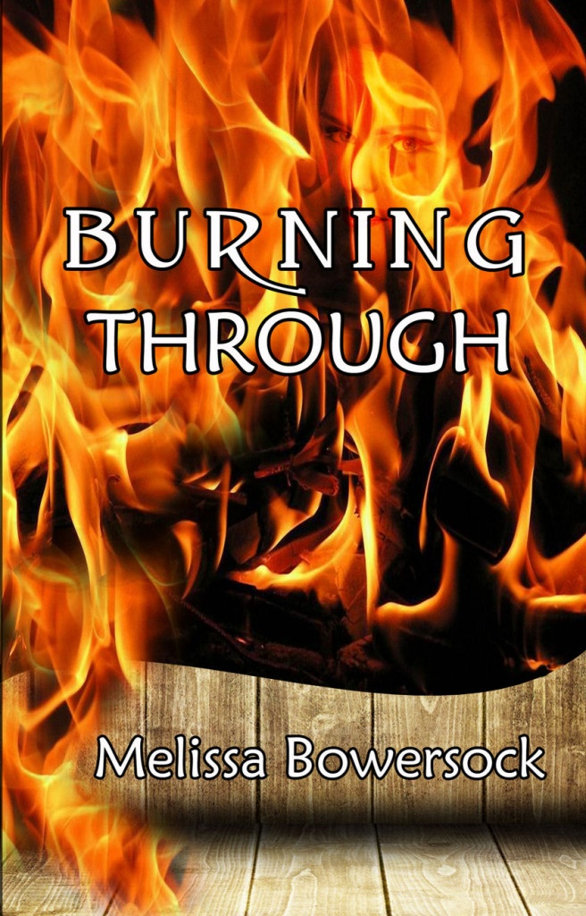 Burning Through book cover